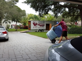 moving day in tampa bay