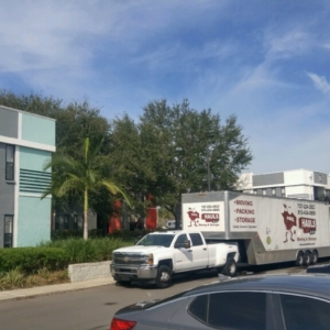 dunedin florida moving company