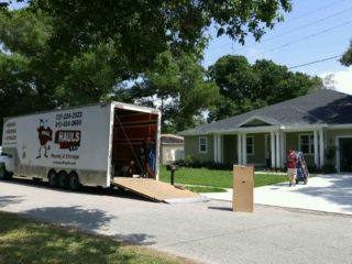 Moving Family In Tampa 2016
