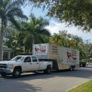 Davis Island Fl Move Jan 2017