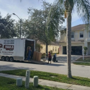 Palm Harbor Fl Move Jan 2017