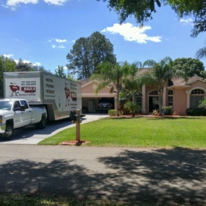 movers in lutz florida