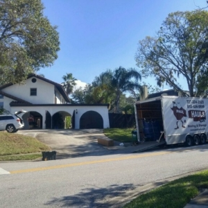 residential moves in palm harbor florida