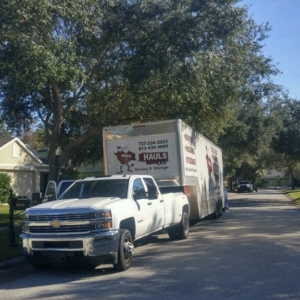 moving company serving tampa florida